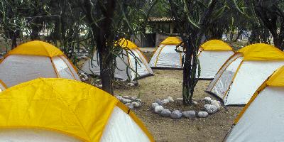 Campamento ambiental